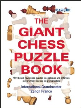 Giant Puzzle book